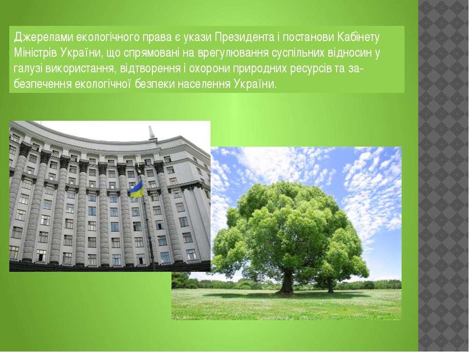 Джерелами екологічного права є укази Президента і постанови Кабінету Міністрі...