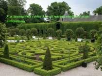 У планування садів Англії часто вводили різні лабіринти