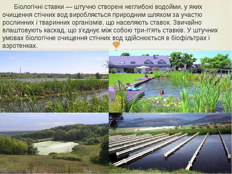 Біологічні ставки— штучно створені неглибокі водойми, у яких очищення стічни...
