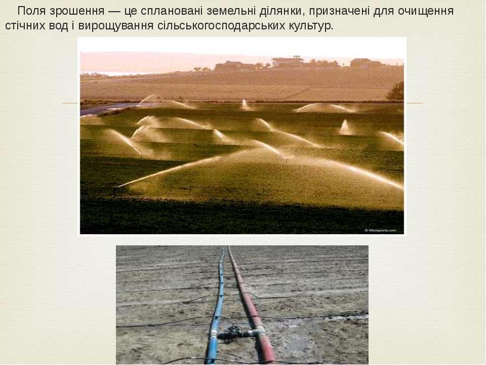 Поля зрошення— це сплановані земельні ділянки, призначені для очищення стічн...