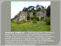 Запові дник «Медобо ри»— природоохоронна територія в межах Гусятинського і (...