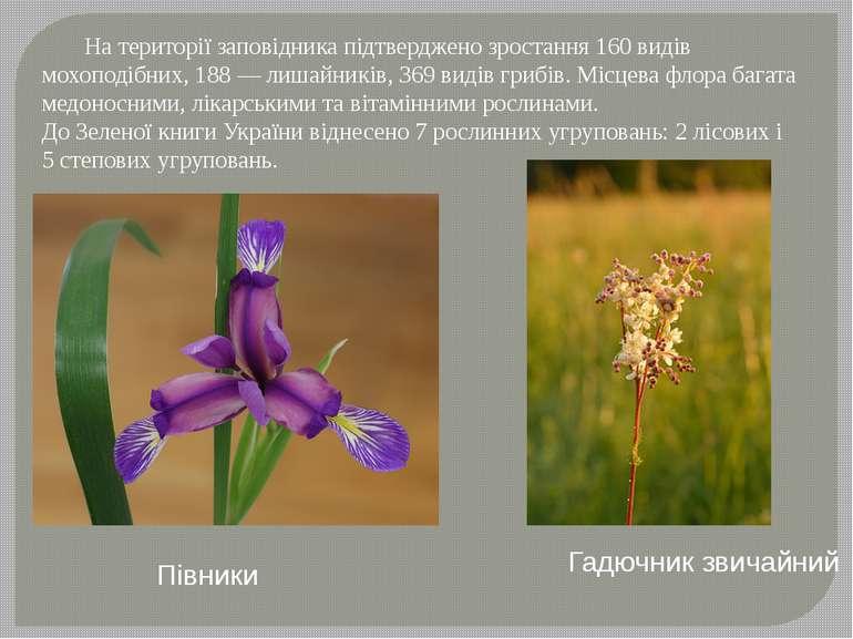 На території заповідника підтверджено зростання 160 видів мохоподібних, 188—...