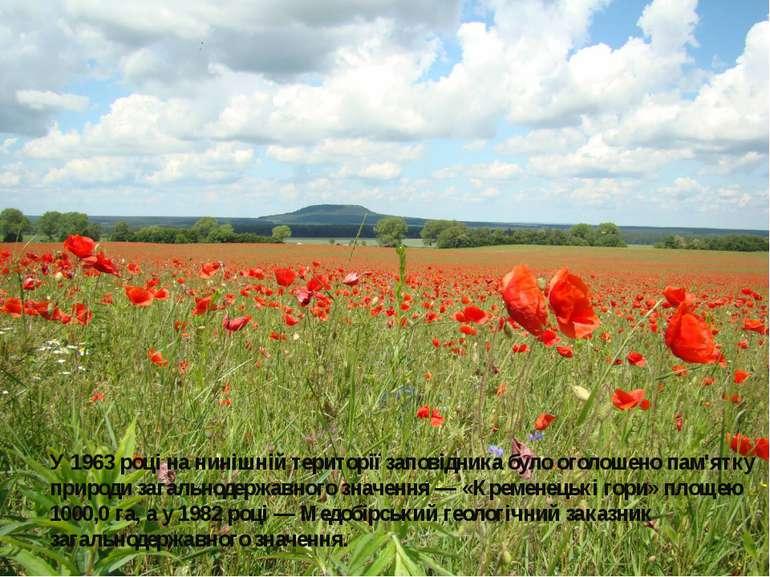 У 1963 році на нинішній території заповідника було оголошено пам'ятку природи...