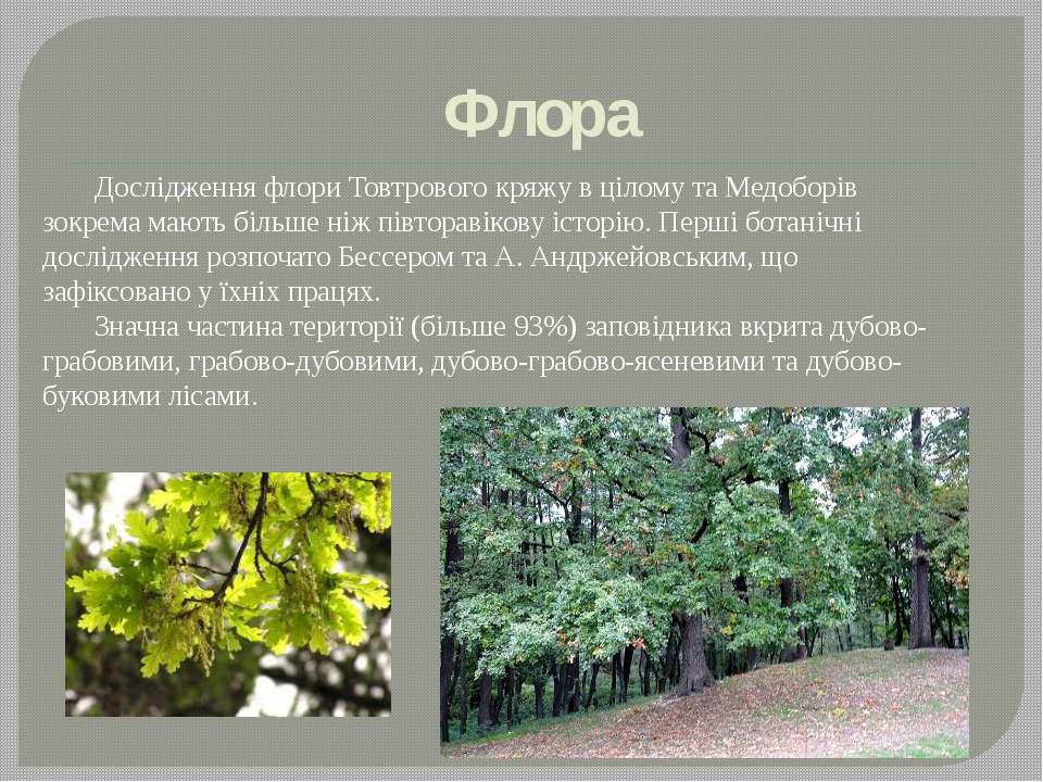 Флора Дослідження флори Товтрового кряжу в цілому та Медоборів зокрема мають ...