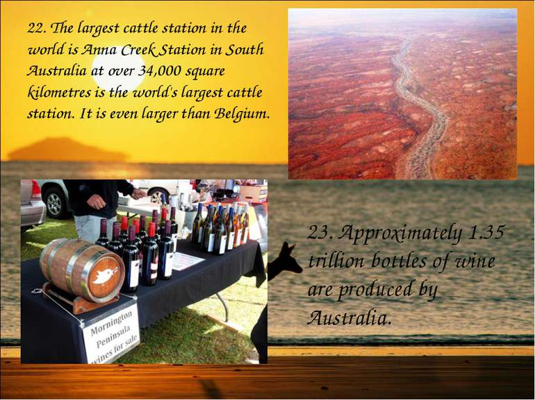 22. The largest cattle station in the world is Anna Creek Station in South Au...