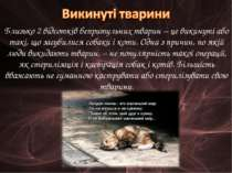 Близько 2 відсотків бепритульних тварин – це викинуті або такі, що загубилися...