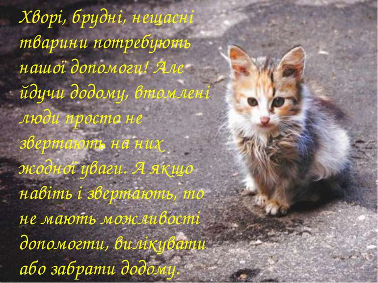 Хворі, брудні, нещасні тварини потребують нашої допомоги! Але йдучи додому, в...