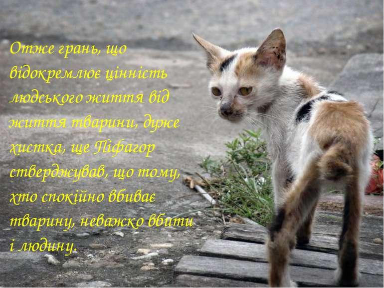 Отже грань, що відокремлює цінність людського життя від життя тварини, дуже х...