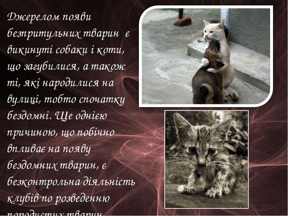Джерелом появи безпритульних тварин є викинуті собаки і коти, що загубилися, ...