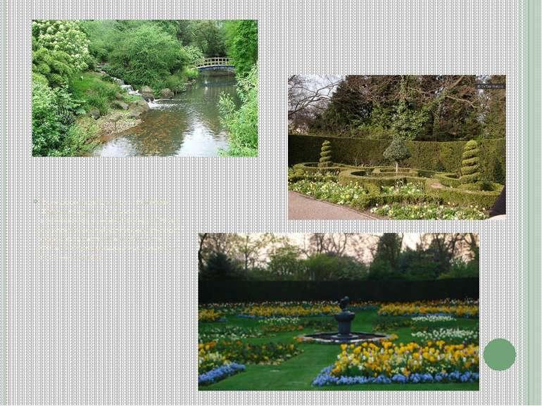 Наступний в рейтингах - Ріджент Парк. Це один із головних королівських парків...