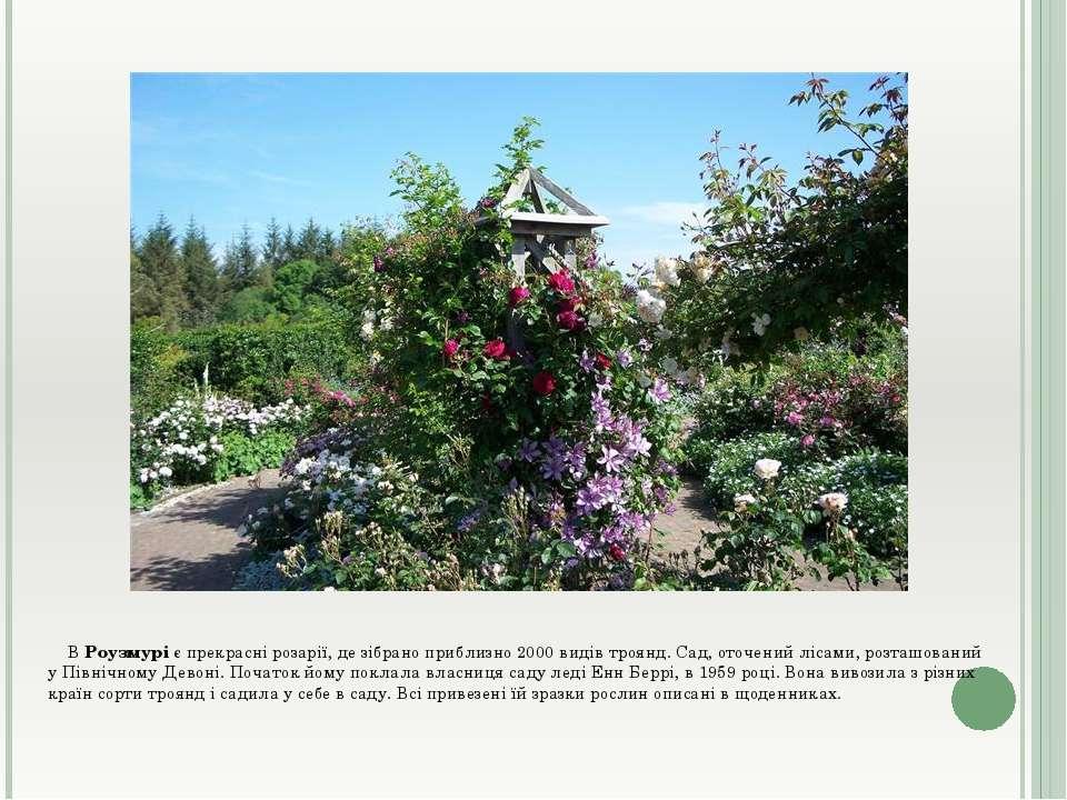 В Роузмурі є прекрасні розарії, де зібрано приблизно 2000 видів троянд. Сад, ...
