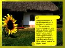 Народні символи в українських піснях є рослинні і тваринні. До рослинних симв...