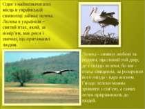 Одне з найвизначніших місць в українській символіці займає лелека. Лелека в у...