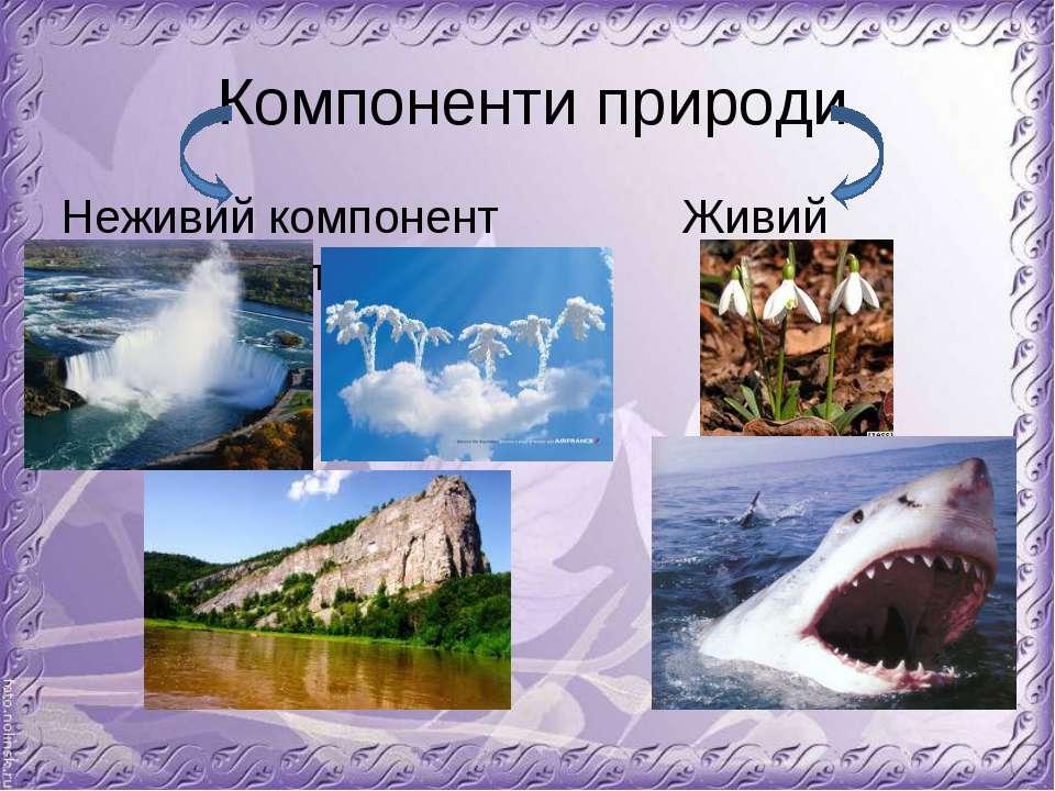 Компоненти природи Неживий компонент Живий компонент