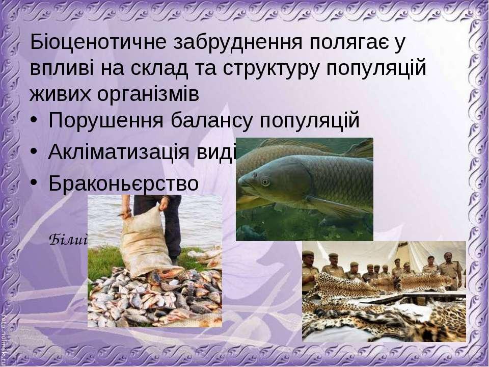 Біоценотичне забруднення полягає у впливі на склад та структуру популяцій жив...