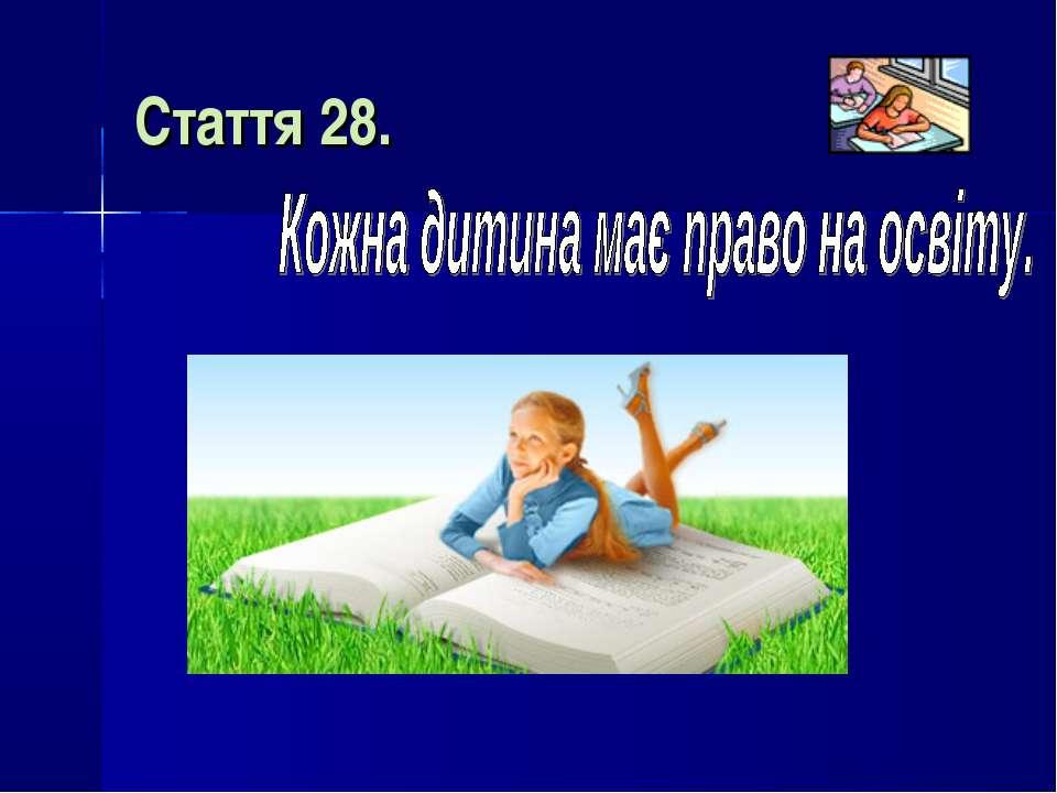 Стаття 28.