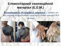 Елементарний еволюційний матеріал (Е.Е.М.) Елементарний еволюційний матеріал ...