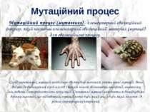 Мутаційний процес Мутаційний процес (мутагенез) - елементарний еволюційний фа...