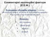 Елементарні еволюційні фактори (Е.Е.Ф.) Елементарні еволюційні фактори – чинн...