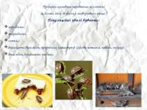 Причини коливань переважно екологічні (клімат, їжа, збудники захворювань тощо...
