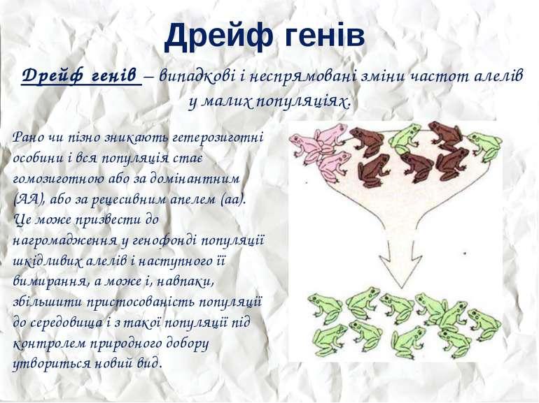 Дрейф генів Дрейф генів – випадкові і неспрямовані зміни частот алелів у мали...