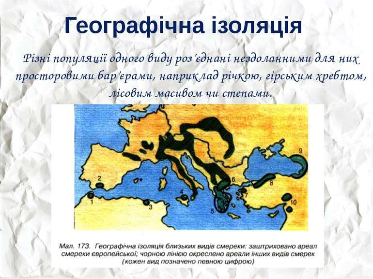 Географічна ізоляція Різні популяції одного виду роз'єднані нездоланними для ...