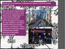 Саме тому шлях розвитку Японії так несхожий на розвиток інших країн в епоху с...