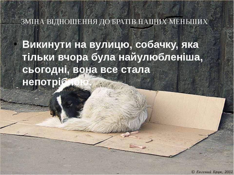 ЗМІНА ВІДНОШЕННЯ ДО БРАТІВ НАШИХ МЕНЬШИХ Викинути на вулицю, собачку, яка тіл...