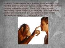 В умовах одомашнення на основі спадкової мінливості ор-ганізмів шляхом штучно...