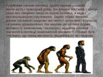 Рушійними силами еволюції Дарвін вважав спадкову мінли¬вість і природний добі...