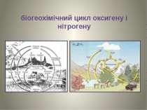 біогеохімічний цикл оксигену і нітрогену
