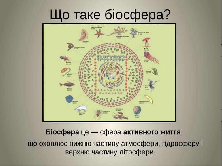 Що таке біосфера? Біосфера це — сфера активного життя, що охоплює нижню части...