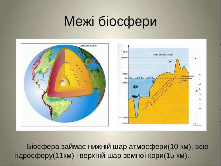 Межі біосфери Біосфера займає нижній шар атмосфери(10 км), всю гідросферу(11к...