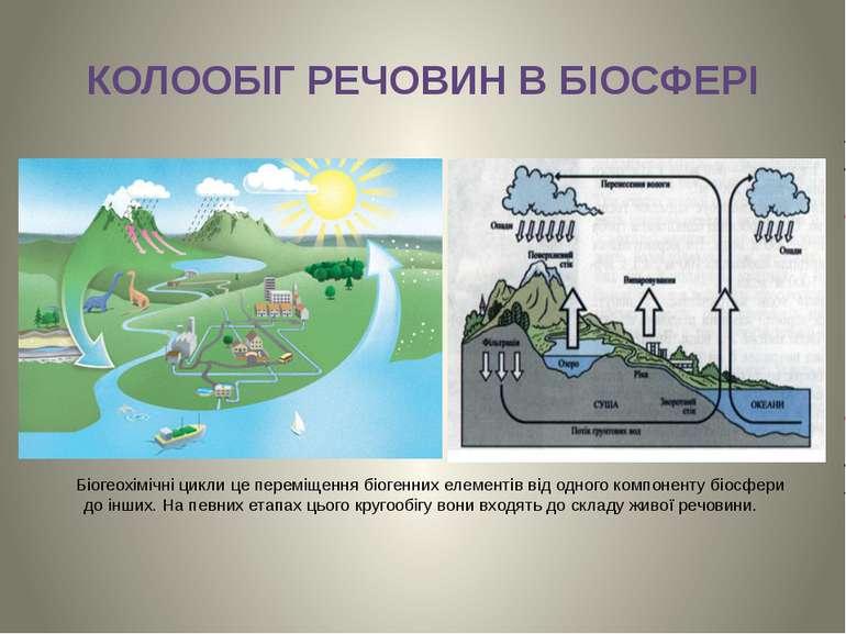 КОЛООБІГ РЕЧОВИН В БІОСФЕРІ Біогеохімічні цикли це переміщення біогенних елем...