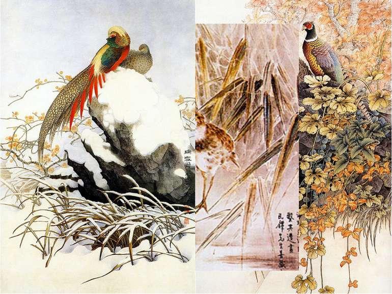 Жанри китайського живопису: хуа-няо Хуа-няо («квіти та птахи») Для цього ж...