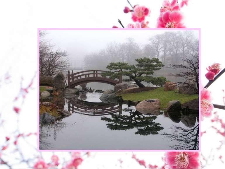Але якою б не була водойма, сад обовязково має острови. В залежності від розм...