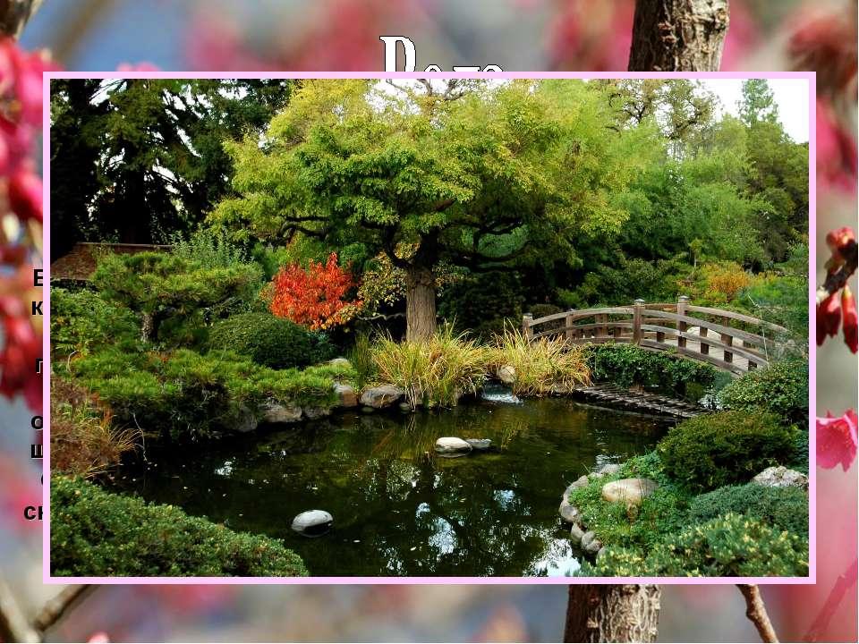 Другий найголовніший елемент саду. Влаштуванню водоймища, його формі та напря...