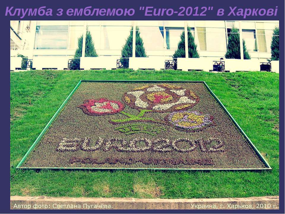 """Клумба з емблемою """"Euro-2012"""" в Харкові"""