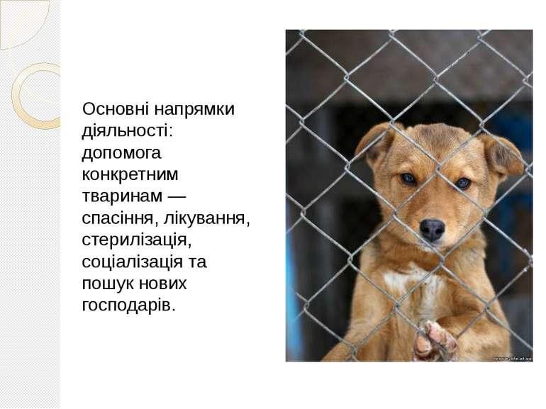 Основні напрямки діяльності: допомога конкретним тваринам — спасіння, лікуван...