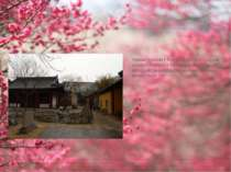 Храми Цзінхай і Тяньфей-гун-два сусідніх храму в Нанкіні із загальною історіє...