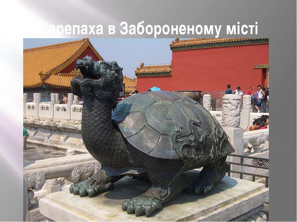 Черепаха в Забороненому місті