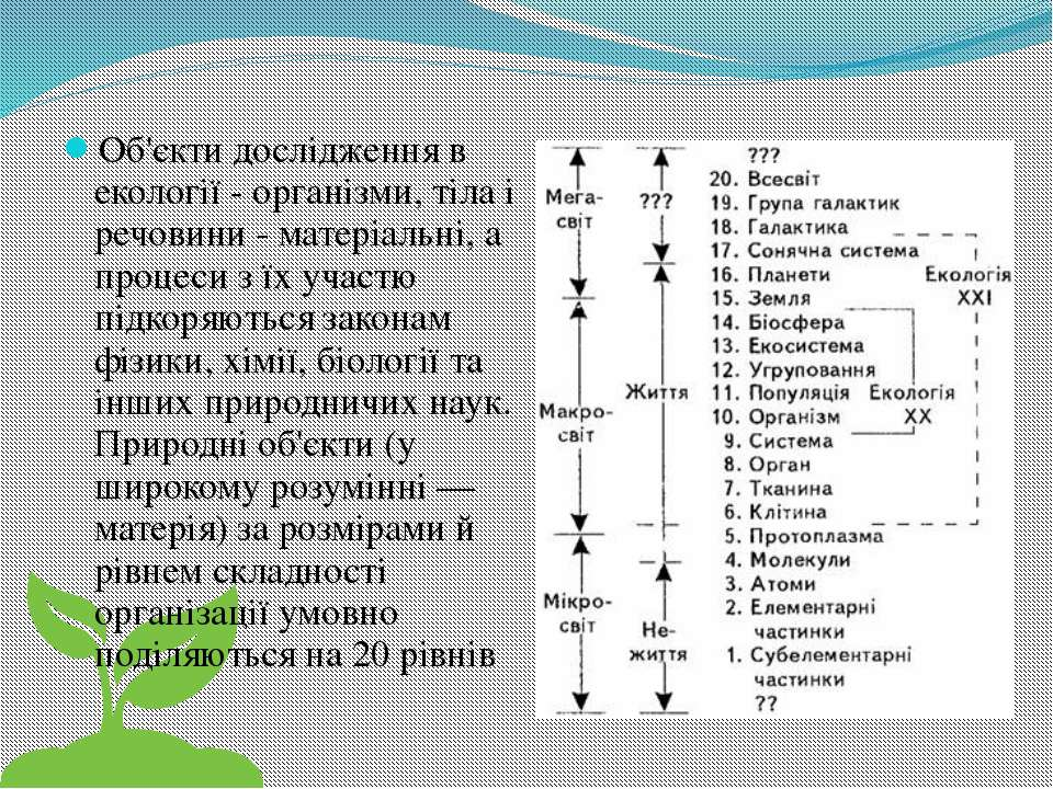 Об'єкти дослідження в екології - організми, тіла і речовини - матеріальні, а ...