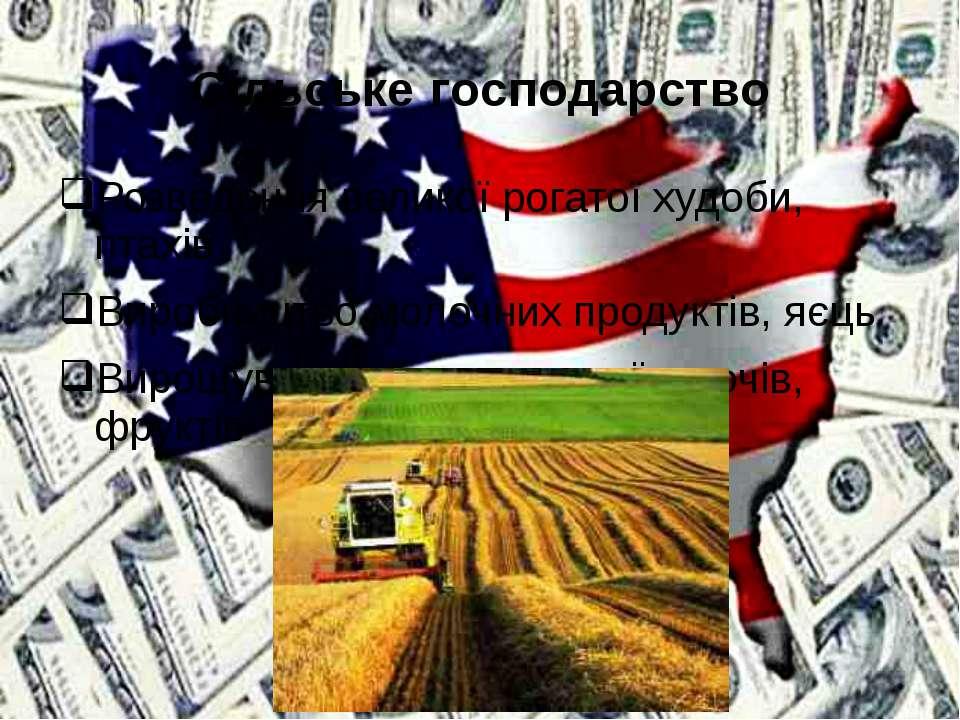 Сільське господарство Розведення великої рогатої худоби, птахів Виробництво м...