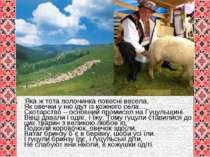 До Яка ж тота полонинка повесні весела, Як овечки у ню ідут із кожного села… ...
