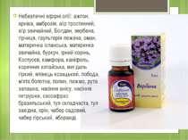 Небезпечні ефірні олії: ажгон, арніка, амброзія, аїр тростинний, аїр звичайни...