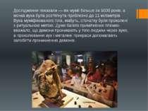 Дослідження показали — вік мумії більше за 5000 років, а мочка вуха була розт...