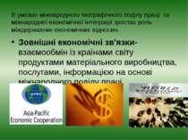 В умовах міжнародного географічного поділу праці та міжнародної економічної і...