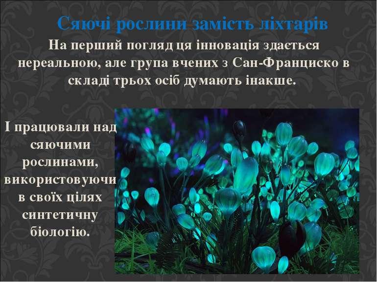 Сяючі рослини замість ліхтарів На перший погляд ця інновація здається нереаль...