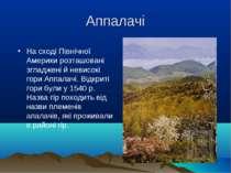 Аппалачі На сході Північної Америки розташовані згладжені й невисокі гори Апп...