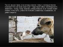 Так кто же они такие, из-за которых многие плачут, и которым многие помогают?...
